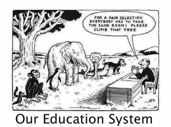haridussüsteem