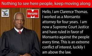 Monsanto kohtunik