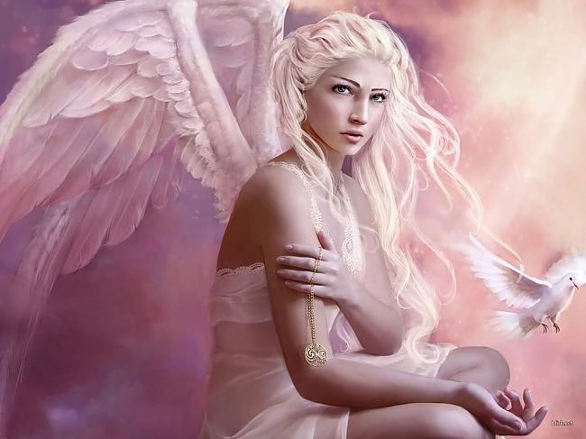 pink-angel2