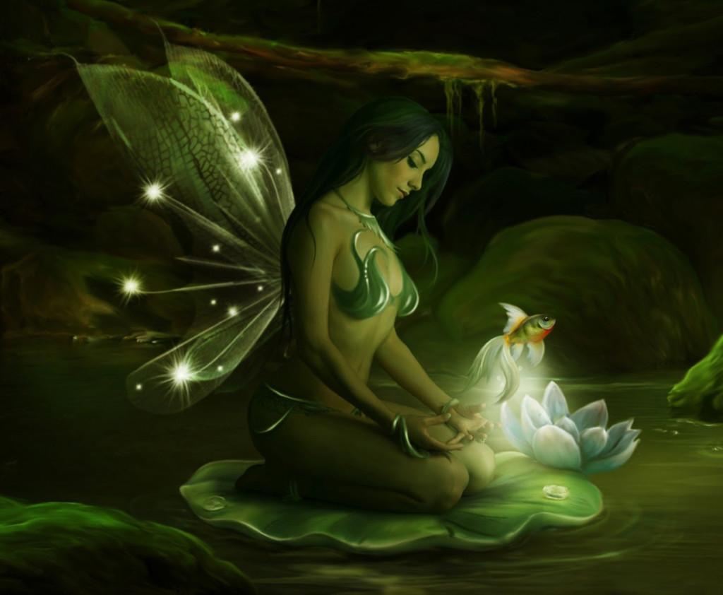 fish-fairy