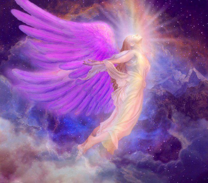 αγγελος μωβ