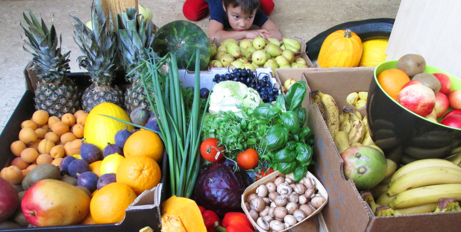 9f111dec2fb Solaris Keskuses toimub parasjagu taimetoidule pühendatud kuu, kus kõik  keskuse toidukohad on loonud spetsiaalsed tervislikud taimetoidumenüüd.